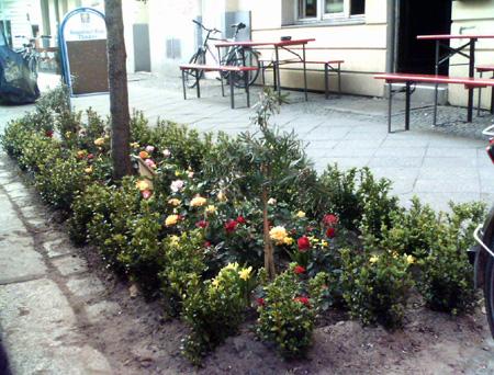 Neue Blumen braucht die Strasse!